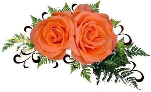دو شاخه گل