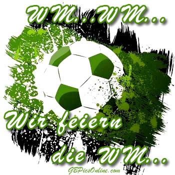 Fußball WM 2014