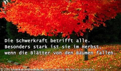 Herbst Gb Pics Gb Bilder Gästebuchbilder Facebook